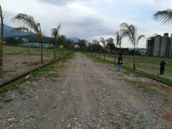 1377 sqft, Plot in Builder doon divine Canal Road, Dehradun at Rs. 36.3500 Lacs