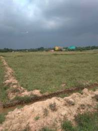 1500 sqft, Plot in Builder Gohira chaka Tamando, Bhubaneswar at Rs. 9.8000 Lacs