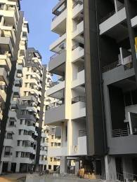 530 sqft, 1 bhk Apartment in Builder Tanish Associates Tanish Orchid charholipune Charholi Budruk, Pune at Rs. 7500