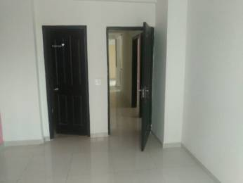 1015 sqft, 2 bhk Apartment in Amrapali Silicon City Sector 76, Noida at Rs. 12000