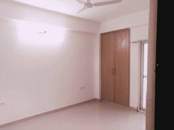 1295 sqft, 2 bhk Apartment in Apex Athena Sector 75, Noida at Rs. 16000
