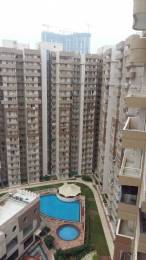 1550 sqft, 3 bhk Apartment in Supertech CapeTown Sector 74, Noida at Rs. 15000