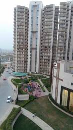 1150 sqft, 2 bhk Apartment in Supertech CapeTown Sector 74, Noida at Rs. 46.0000 Lacs