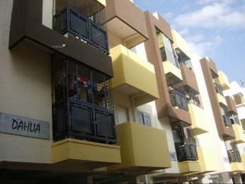 972 sqft, 2 bhk Apartment in Reputed Daisy Dahlia Daffodil Jayanagar, Bangalore at Rs. 65.0000 Lacs