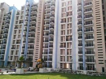 1250 sqft, 2 bhk Apartment in Builder Project Sector 35, Sonepat at Rs. 28.0000 Lacs