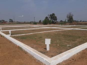 1000 sqft, Plot in Builder dariyapur Naubatpur Bikram Road, Patna at Rs. 6.5000 Lacs