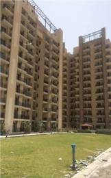 1872 sqft, 3 bhk Apartment in Satya The Hermitage Sector 103, Gurgaon at Rs. 95.0000 Lacs