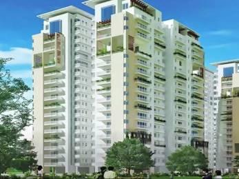 1427 sqft, 2 bhk Apartment in Indiabulls Centrum Park Sector 103, Gurgaon at Rs. 70.0000 Lacs