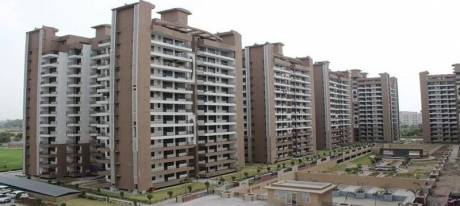 1000 sqft, 2 bhk Apartment in Builder Project Sector 35, Sonepat at Rs. 31.2000 Lacs