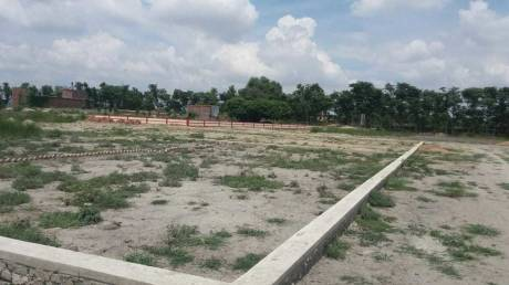 999 sqft, Plot in Citizen Pearl Jhusi, Allahabad at Rs. 9.5000 Lacs