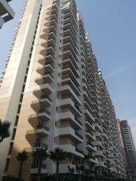 1090 sqft, 2 bhk Apartment in Ace City Sector 1 Noida Extension, Greater Noida at Rs. 39.2400 Lacs