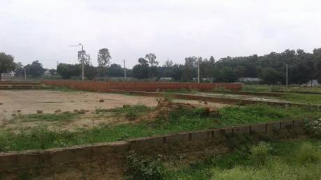 1000 sqft, Plot in IBIS Green City Lucknow Kanpur Highway, Lucknow at Rs. 9.9900 Lacs