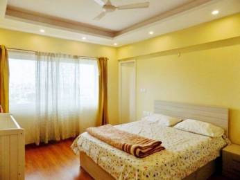 2420 sqft, 3 bhk Apartment in Shalimar Gallant Aliganj, Lucknow at Rs. 45000
