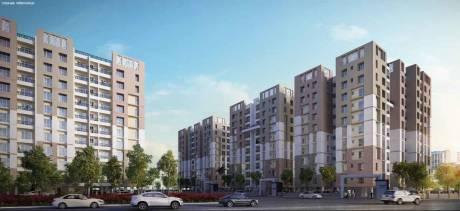 950 sqft, 2 bhk Apartment in Unimark Springfield Rajarhat, Kolkata at Rs. 38.9500 Lacs