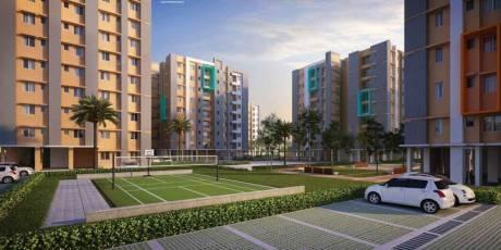 1066 sqft, 3 bhk Apartment in Signum Parkwoods Estate Hooghly Chinsurah, Kolkata at Rs. 25.5840 Lacs