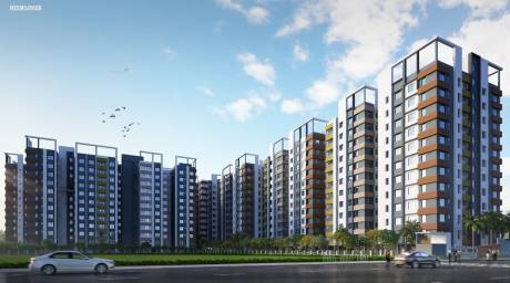 951 sqft, 2 bhk Apartment in Signum Windflower Madhyamgram, Kolkata at Rs. 26.6375 Lacs