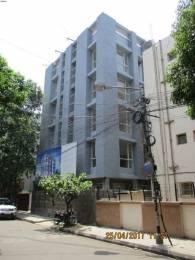 1501 sqft, 3 bhk Apartment in Builder Project New Alipore, Kolkata at Rs. 1.4184 Cr