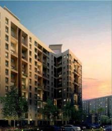 1058 sqft, 2 bhk Apartment in Kalpataru Serenity Bldg 2 Manjari, Pune at Rs. 51.5000 Lacs