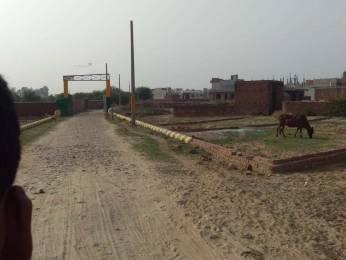 1000 sqft, Plot in Builder AMITY GREENS Gomti Nagar Extension, Lucknow at Rs. 13.0000 Lacs