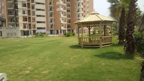 1000 sqft, 2 bhk Apartment in SG Grand Raj Nagar Extension, Ghaziabad at Rs. 28.5000 Lacs