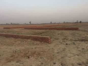3200 sqft, Plot in Builder TASHI Dariyapur, Patna at Rs. 20.8000 Lacs
