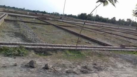 1000 sqft, Plot in Builder Kohinoor Lohamandi, Agra at Rs. 8.0000 Lacs