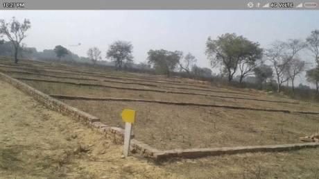 1000 sqft, Plot in Builder Kohinoor Lohamandi, Agra at Rs. 8.0100 Lacs