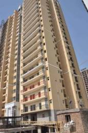 1010 sqft, 2 bhk Apartment in The Antriksh Golf View I Sector 78, Noida at Rs. 50.5000 Lacs