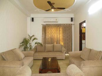 1850 sqft, 3 bhk BuilderFloor in Builder Project Kirti Nagar, Delhi at Rs. 2.4500 Cr