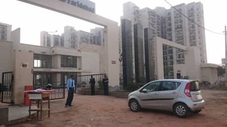 1150 sqft, 2 bhk Apartment in Umang Summer Palms Sector 86, Faridabad at Rs. 46.0000 Lacs