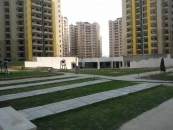 1250 sqft, 2 bhk Apartment in RPS Savana Sector 88, Faridabad at Rs. 48.0000 Lacs