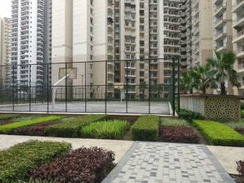 880 sqft, 2 bhk Apartment in Ajnara Homes Sector 16B Noida Extension, Greater Noida at Rs. 9000
