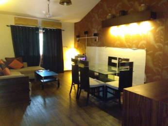 1000 sqft, 2 bhk Apartment in Builder Aldeia miraflor complex Arpora, Goa at Rs. 40000