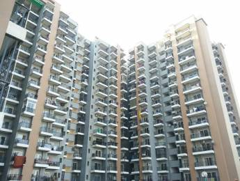 1800 sqft, 3 bhk Apartment in Saviour Saviour Park Mohan Nagar, Ghaziabad at Rs. 17000