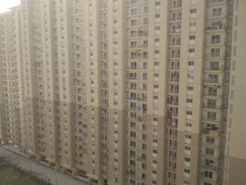 1160 sqft, 3 bhk Apartment in Saya Zion Sector 4 Noida Extension, Greater Noida at Rs. 11000