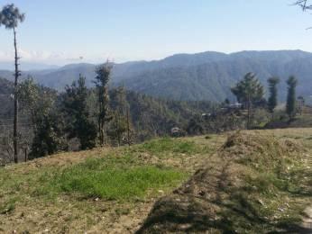 2700 sqft, Plot in Builder Project Mukteshwar, Nainital at Rs. 26.5000 Lacs