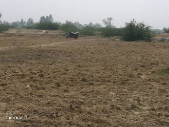 1250 sqft, Plot in Builder Tashi Dariyapur Road, Patna at Rs. 7.5000 Lacs