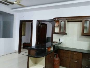1200 sqft, 3 bhk BuilderFloor in Builder Project Double Storey New Rajinder Nagar, Delhi at Rs. 60000