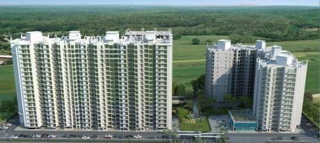 1105 sqft, 2 bhk Apartment in Sethi Max Royal Sector 76, Noida at Rs. 55.3000 Lacs