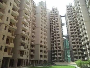 1135 sqft, 2 bhk Apartment in Civitech Sampriti Sector 77, Noida at Rs. 62.4000 Lacs