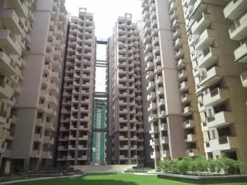 1370 sqft, 3 bhk Apartment in Civitech Sampriti Sector 77, Noida at Rs. 75.3000 Lacs