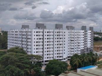 1091 sqft, 3 bhk Apartment in Builder PALM GROVES Chandapura Anekal Road, Bangalore at Rs. 35.4575 Lacs