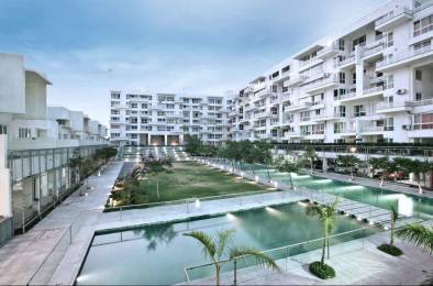 1650 sqft, 3 bhk Apartment in Rohan Mithila Viman Nagar, Pune at Rs. 42000