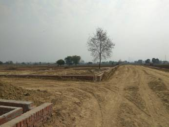 1000 sqft, Plot in Builder Pole star city sikatiya, Kanpur at Rs. 5.5000 Lacs