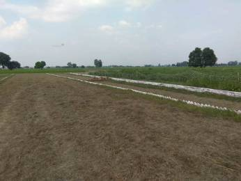 1000 sqft, Plot in Builder zaire sparkle valley Gauhania Road, Allahabad at Rs. 5.0100 Lacs