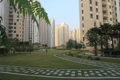 1750 sqft, 3 bhk Apartment in Unitech Horizon PI, Greater Noida at Rs. 15000