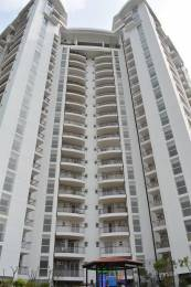 1715 sqft, 3 bhk Apartment in Spacetech Edana Sector Alpha, Greater Noida at Rs. 22000