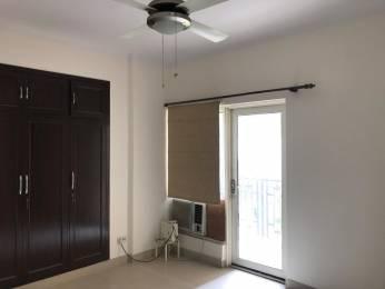 2150 sqft, 3 bhk Apartment in ATS Paradiso CHI 4, Greater Noida at Rs. 25000