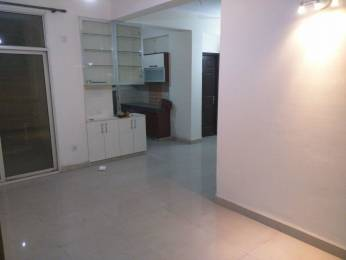 1120 sqft, 2 bhk Apartment in Paramount Mapple Crossing Republik, Ghaziabad at Rs. 9000