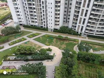 2908 sqft, 4 bhk Apartment in DLF The Belaire Sector 54, Gurgaon at Rs. 4.4000 Cr